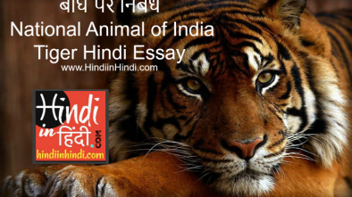 essay on tiger in hindi Essays - largest database of quality sample essays and research papers on save the tigers in hindi.